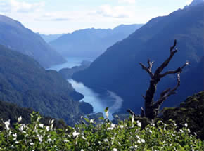 Fiordland Adventure operates kayak and cruise tours on Doubtful Sound